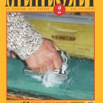 meheszet_201302