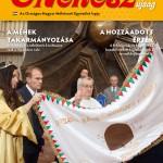 Magyar_Mehesz_2014_12_b1