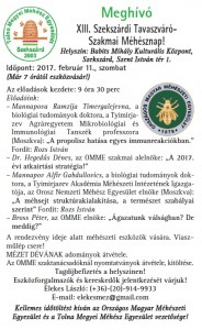 XIII. Szekszárdi Tavaszváró 2017